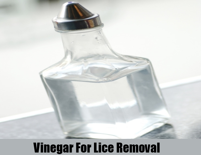 Vinegar For Lice Removal
