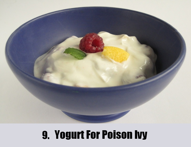 Yogurt For Poison Ivy