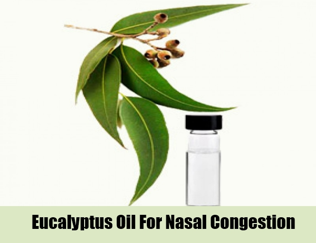 Eucalyptus Oil For Nasal Congestion