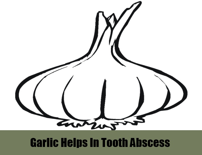 Garlic Helps In Tooth Abscess