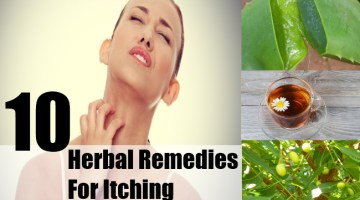 Herbal Remedies for Itching