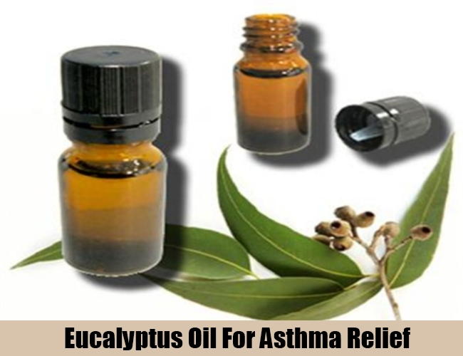 Eucalyptus Oil For Asthma Relief