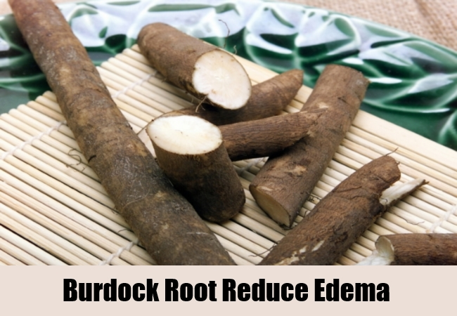 Burdock Root Reduce Edema