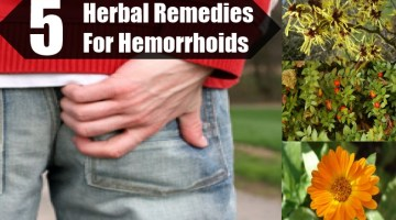 Herbal Remedies For Hemorrhoids