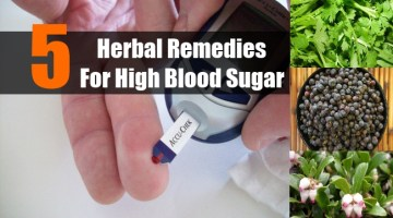 Herbal Remedies For High Blood Sugar