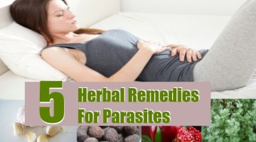 Herbal Remedies For Parasites