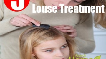 Louse Treatment