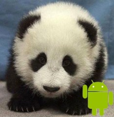 google farmer update big panda