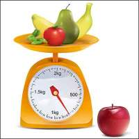 Healthy Choices Scale Image - Search Influence