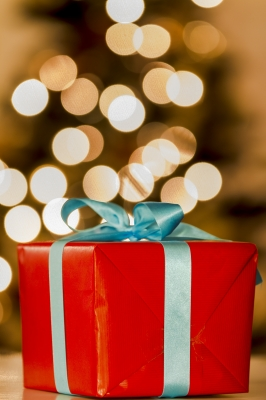 Last Minute Holiday Present For Marketing Blog