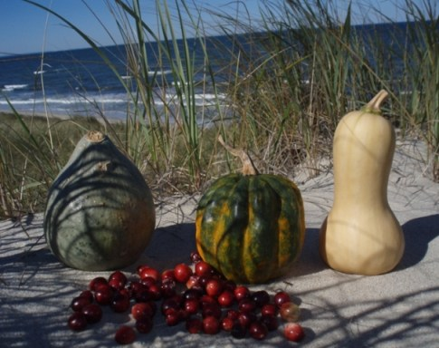 farmers market produce on the beach in cape cod