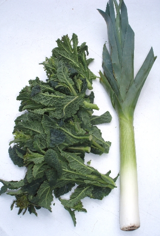 kale rapini and leek