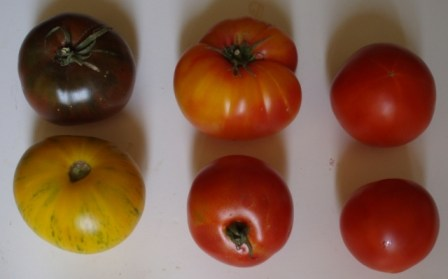 heirloom tomatoes and dry farmed early girl