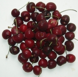 cherries-0607