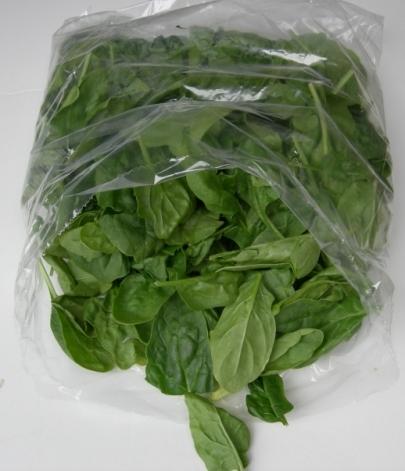 spinach-052106