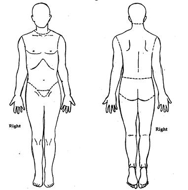 Body Diagram For Documenting Wounds Wiring Schematic Diagram