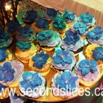 Vegan n Gluten free Cupcakes from bakery Second Slices® in Edmonton