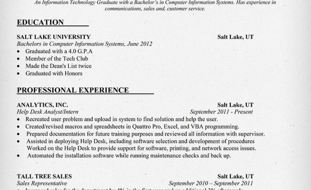 Information Technology Resume Examples Full Size Of Large Size Of