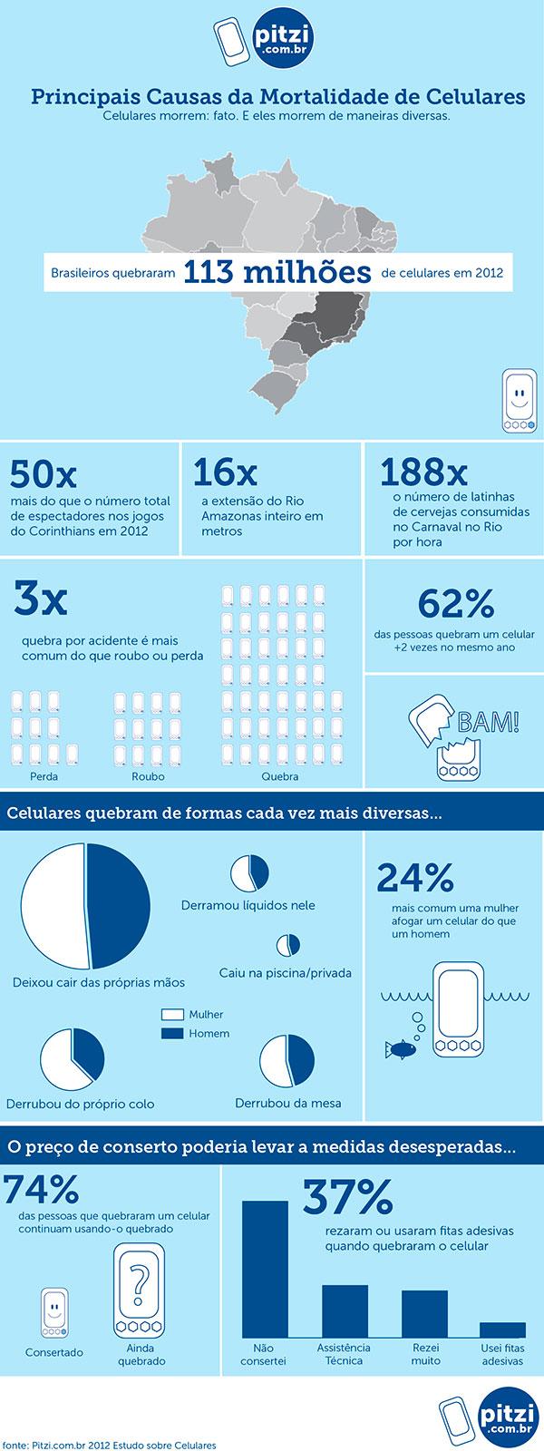 pitzi-infografico
