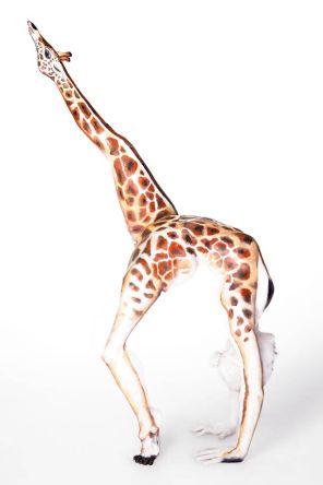 Contorcionistas viram animais através de body art