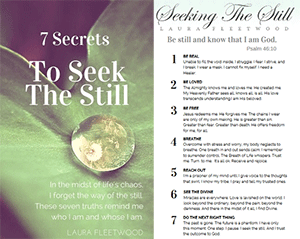 rp_secrets-to-seek-the-still-300x239.png