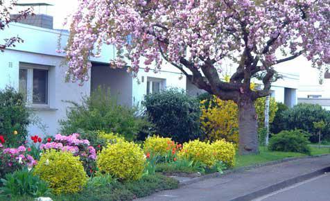 Vorgarten selbstde - kleinen vorgarten gestalten