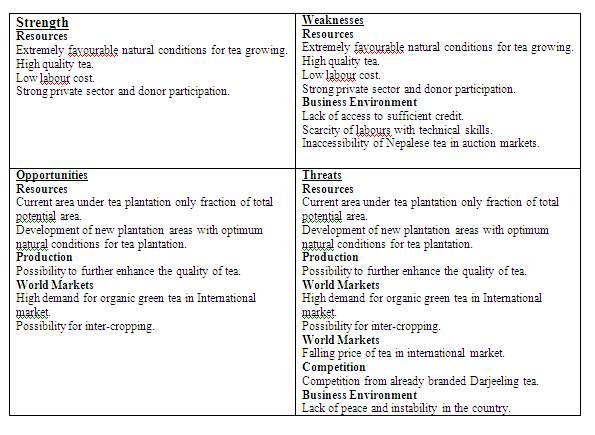 Advertisement analysis essay example