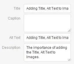 Adding Title, Alt Text and Description to Images