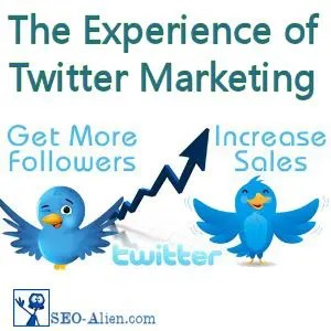 The Experience of Twitter Marketing