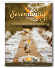 serendipity 3D cover