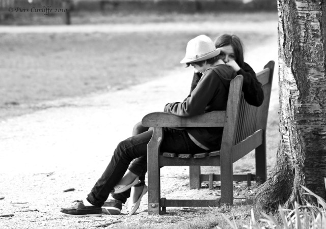 couple-on-the-bench-queens-square-hd-wallpaper