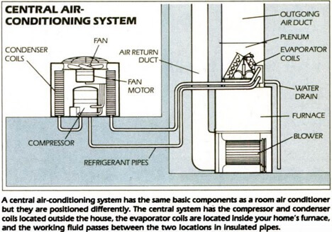 How Do Heat Pumps Work in Cold Weather? Service ChampionsService