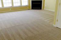Carpet Repair Madison Wi - Carpet Vidalondon