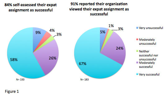 Characteristics of Successful Expatriates Unleashing Success by