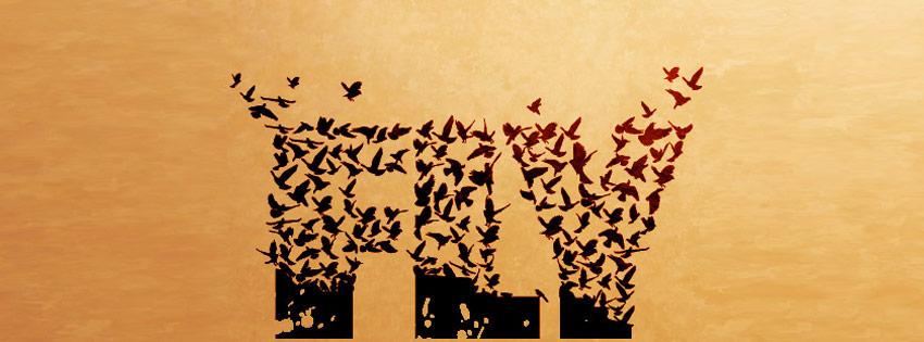 Flying Bird Text Facebook Timeline Cover Wallpaper - 850 x 315