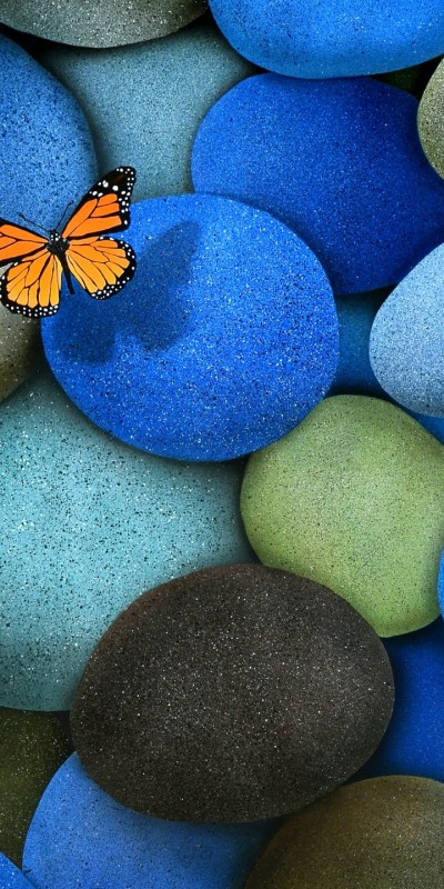 Blue Brown Butterfly Stones - [720x1440]