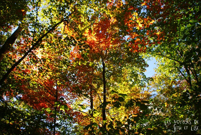 blog pvt canada pvtiste quebec mont orford parc photgraphie voyage couple ete indien summer indian couleur colors nature tour du monde arbres