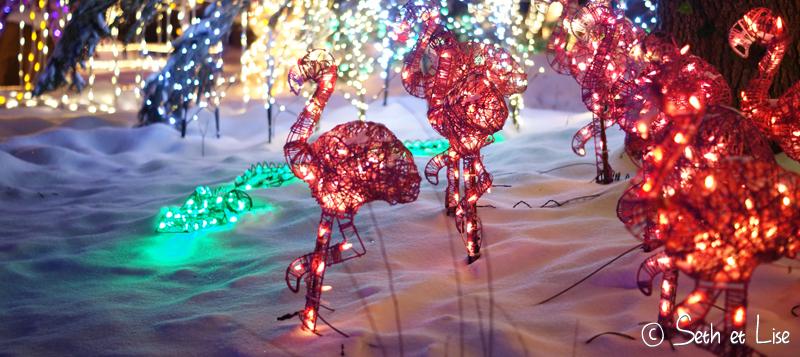 blog canada voyage noel christmas deco kitsch xmas edmonton light illumination