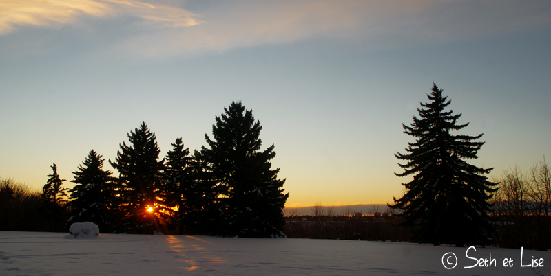 blog voyage canada photo pvt edmonton hiver river valley sunset trees soleil arbres