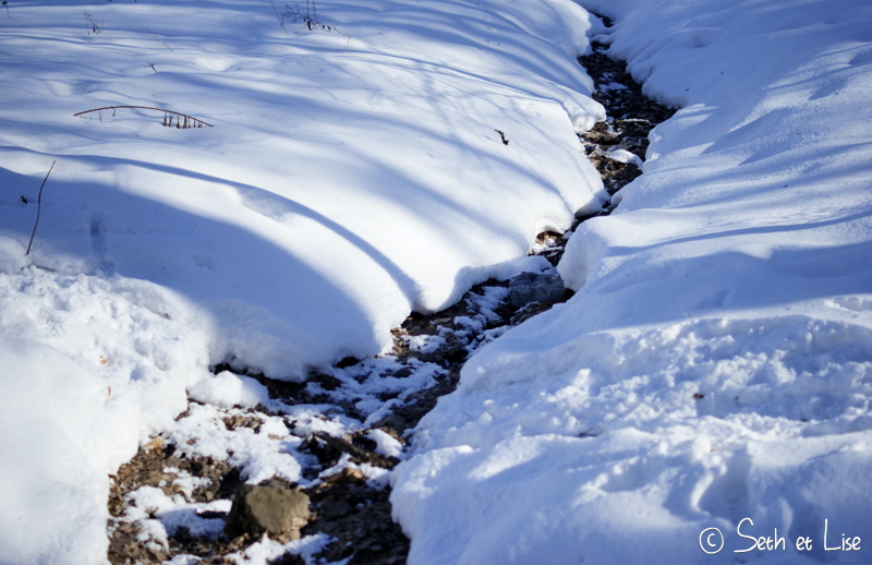 blog pvt canada voyage photographie montreal mont royal hiver neige riviere river