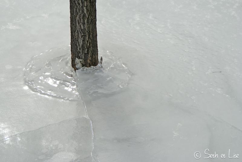 Montréal sous la glace, en quelques photos
