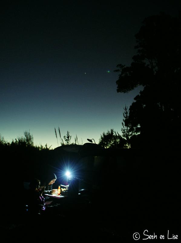 blog whv nouvelle zelande new zealand voyage tour du monde road trip couple photographie shakespear abbey caves nature