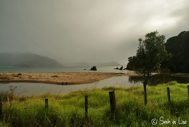 blog voyage nz canada photo seth lise whv pvt coromandel beach plage zealande