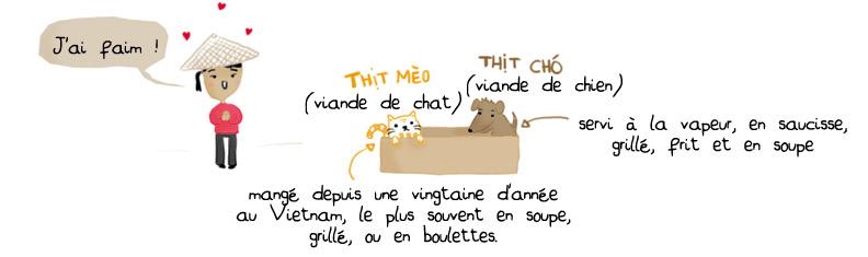 blog voyage manger chien vietnam chat hanoi