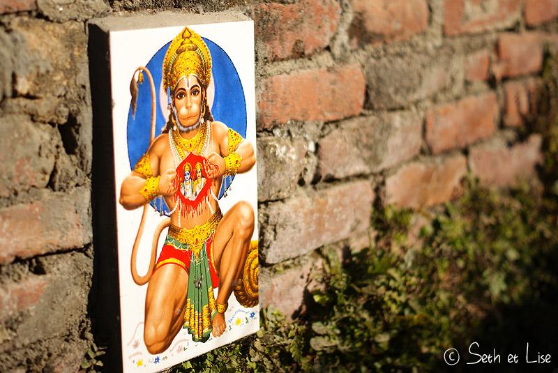 blog voyage tour du monde nepal katmandou singe