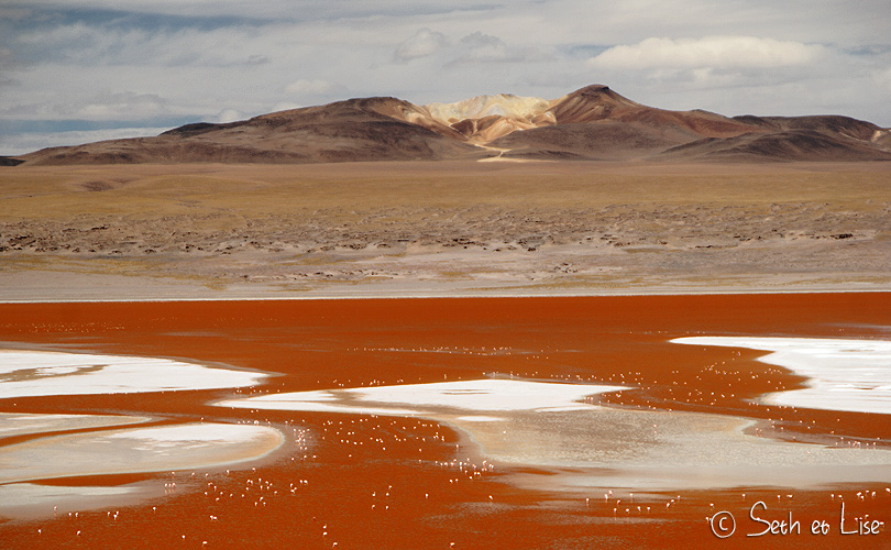 laguna colorada view