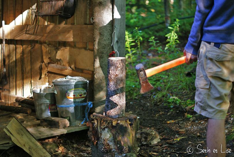 hax lumberjack