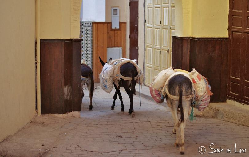 ane marchandise maroc