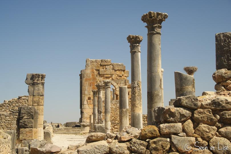 colonne volubilis