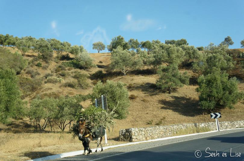 ane route maroc